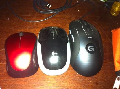 My mice family